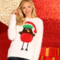 Christmas Womens Robin Jumper